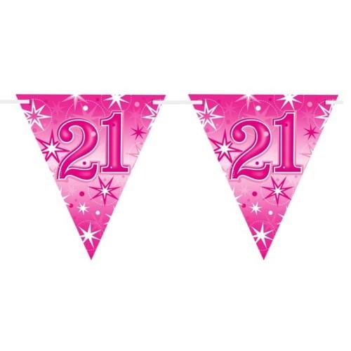 Age 21 pink Sparkle  flag banner