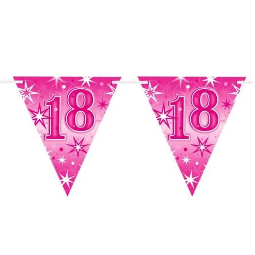 Age 18 pink Sparkle  flag banner