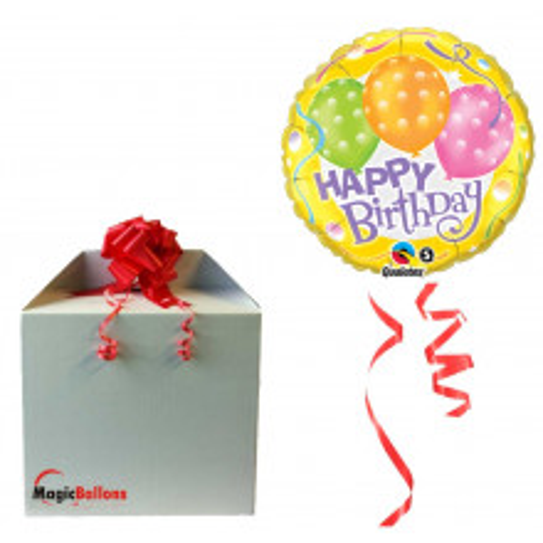 Balloon  Birthday Polka Dot Balloons