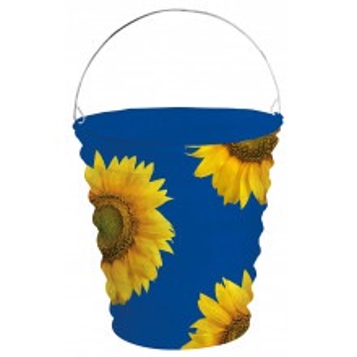 Sunflower lanterna modra
