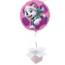 Paw Patrol Skye & Everest - foil balloon in a package