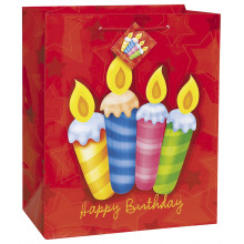 Birthday Surprise  gift bag green