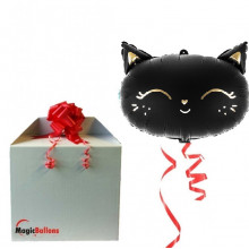 Black cat - matt foil balloon in a package