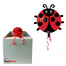 Ladybug - foil balloon in a package