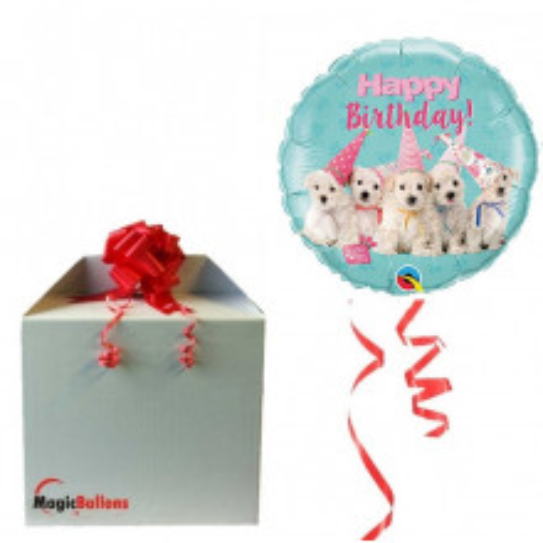 Birthday Puppies