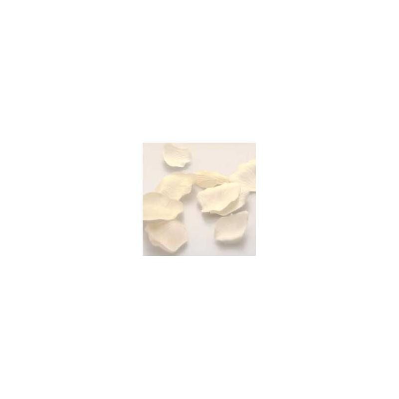 Seznami vrtno belih