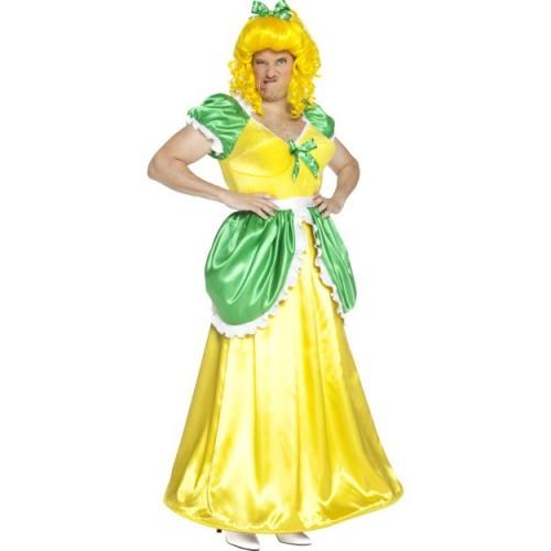 Drizella kostum