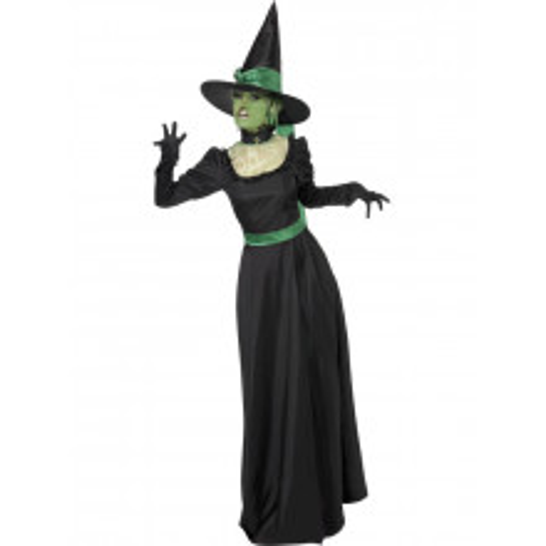 Čarovnica Wicked kostum