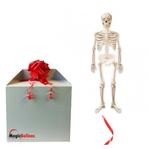 Mr Bones AirWalkers in the box
