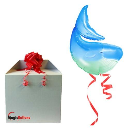Shark balloon in box